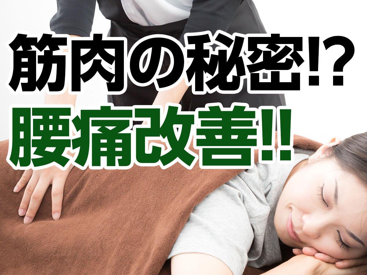 ある筋肉をマッサージして腰痛を改善|町田deマッサージ!